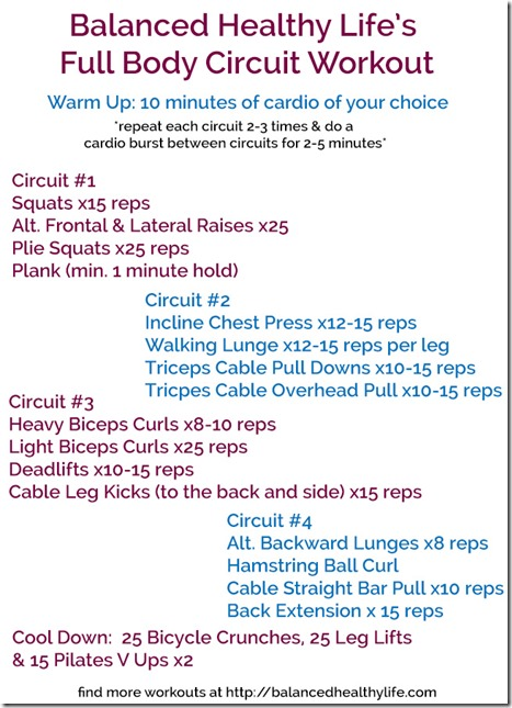 Full Body Circuits Workout